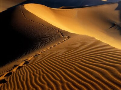 Namibia: 10 Facts You Might Not Know 3