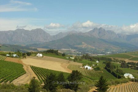 Stellenbosch: 10 Facts You Might Not Have Known 2