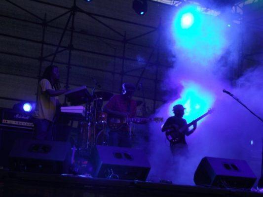 Photo Album: Hatfield Carnival 2011 6