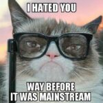 Grumpy Cat Meme 001 150x150 Erik Charles Nielsen on Conan (Video)