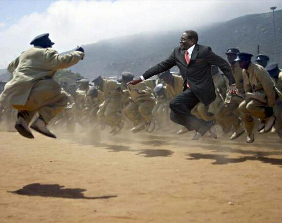#MugabeFalls 15