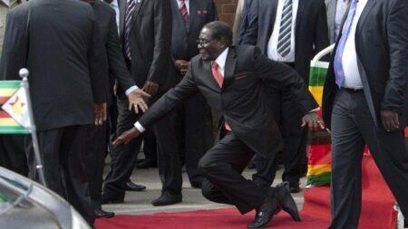 15 Hilarious #MugabeFalls Memes 3