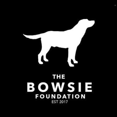 "The-Bowsie-Foundation Shortstraw releases music video for ""Bowsie"""