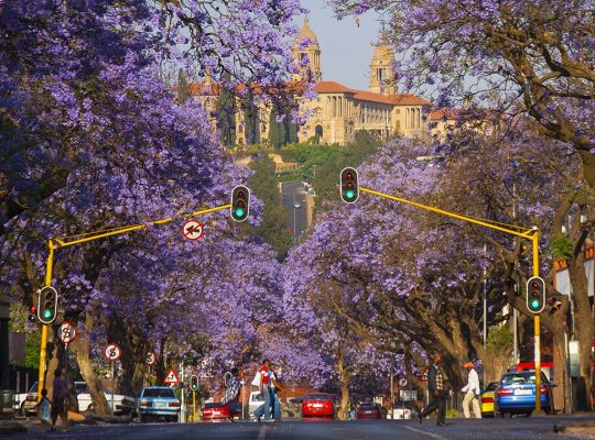 Pretoria: 20 Facts You Didn't Know 1