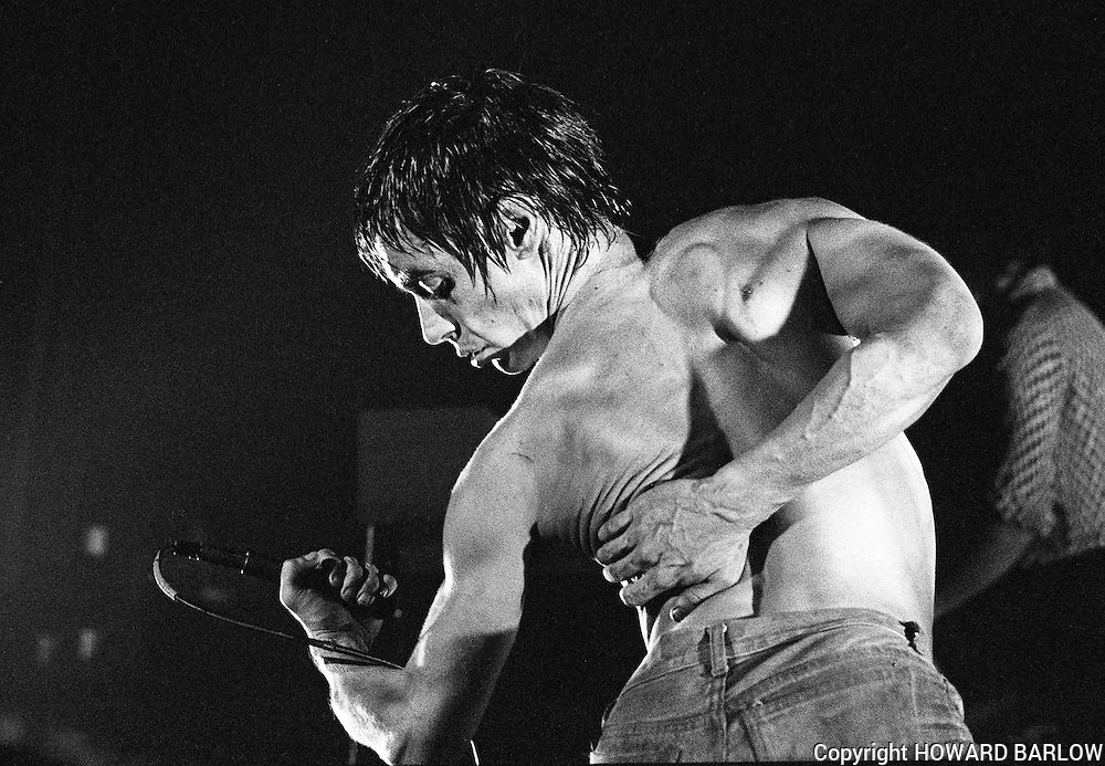 Iggy Pop - 1977 Songs
