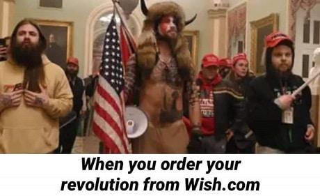 Capitol Riots 12